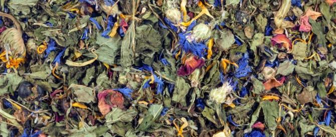 Beautiful Botanical Teas from Cindy's Tea