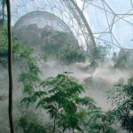 Visit to the Eden Project, South West England with afternoon tea