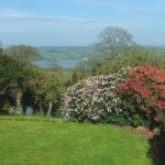 Explore the sweeping gardens at Pentillie Castle, Cornwall.