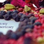 Edinberry botanical gin infusions for gin or vodka