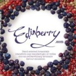 Edinberry Botanical Gin Infusion kit