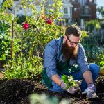 Online garden and maintenance course